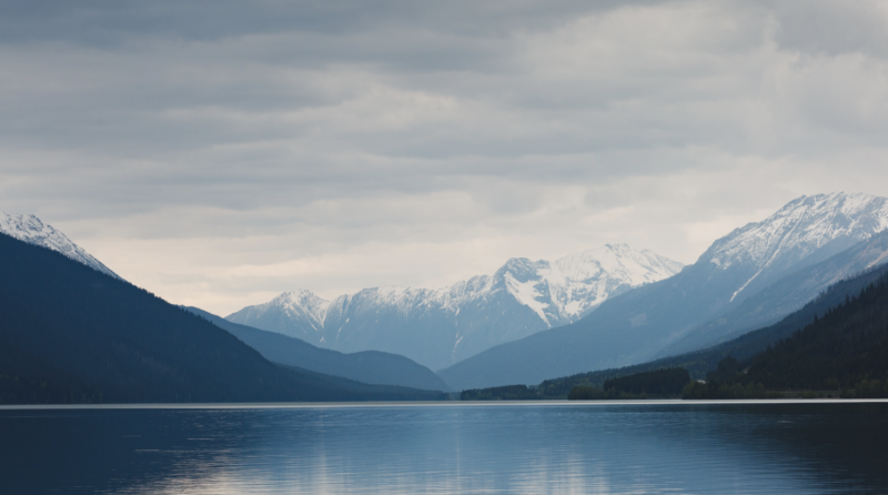 A blue mountain range in the distance. In front of it is an expansive lake with a lone duck swimming in the foreground.